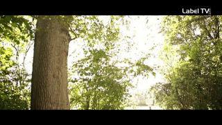 Jason Anousheh - Ein Stück vom Himmel